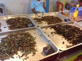 Fried crickets anyone?