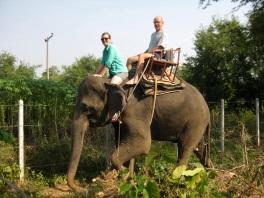 Elephant camp