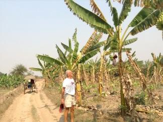 Check out those Inwa bananas