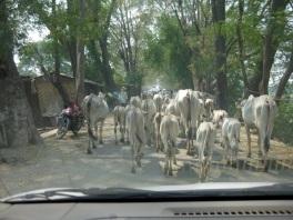 Traffic jam on way to Inwa