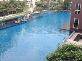 Condo pool 😍