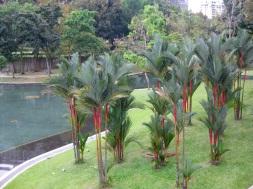 Garden at Petronas Towers