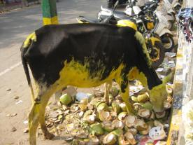 Holy (yellow) cow