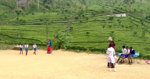 School & teachers for tea plantation children