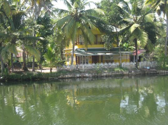 Backwater scene