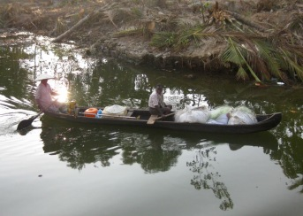 Life on the backwaters