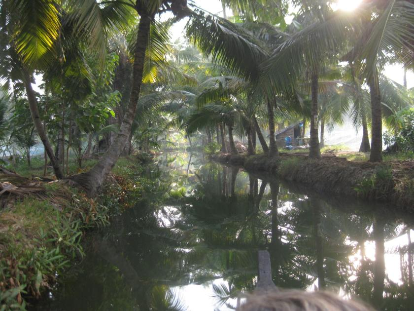 Munroe Island backwaters