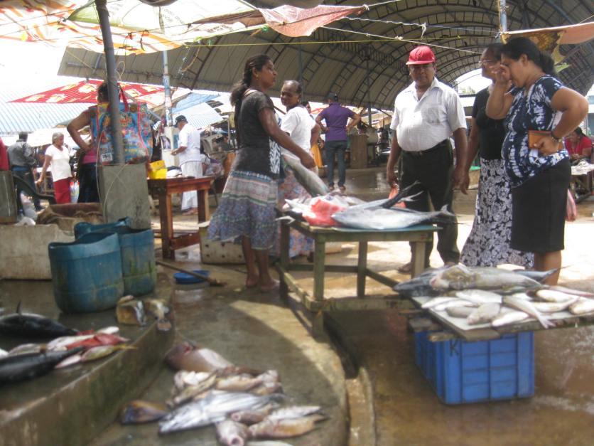 Bidding on fish