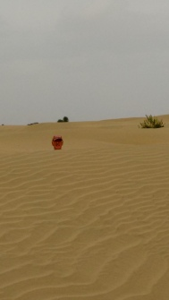 Headshot, behind a sand dune