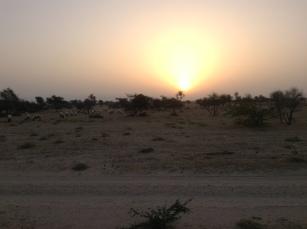 Sunrise on the desert