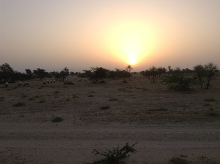 Sunrise on the desert
