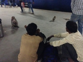 Waiting for the train to Agra