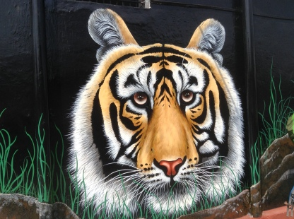 Great tiger murals