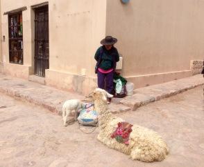 Woman without Llama
