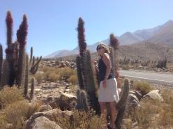 Villcara desert