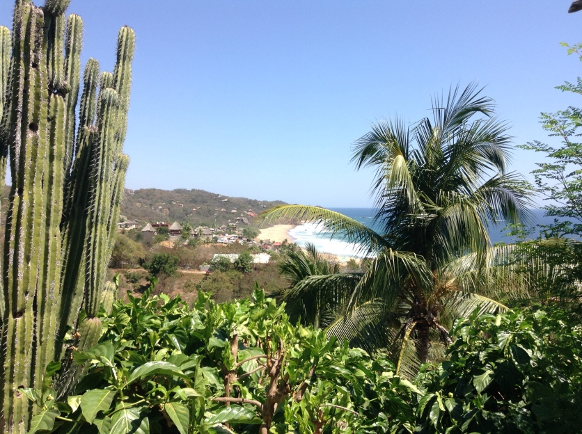 View from our hotel in Mazunte