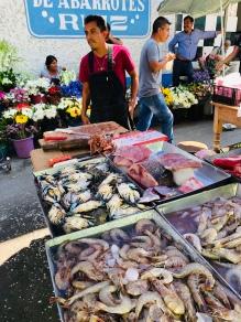 Fresh fish & seafood