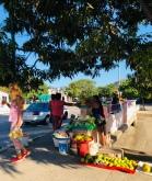 Corner fruit market